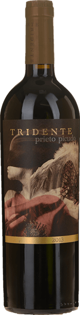 TRIDENTE prieto picudo, Castilla Y Leon 2013