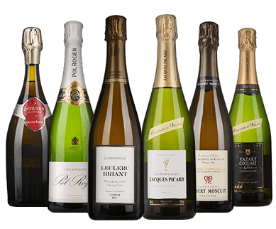 LANGTONS Champagne Celebration Six-Pack NV