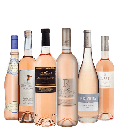 Langtons Rose Summer in Provence six pack MV